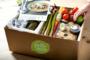 An honest review of HelloFresh Meal Kits by Tatiana Schoch